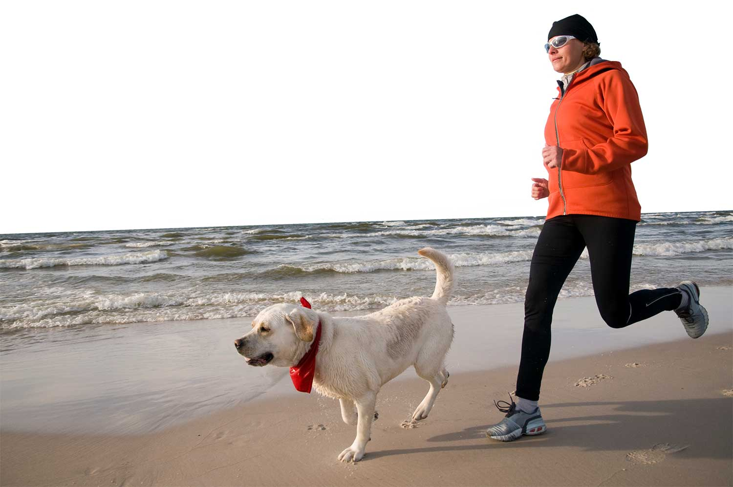 Why Running Is Great For Your Dog (and You!)